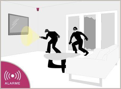 intrusion detection alarme securite